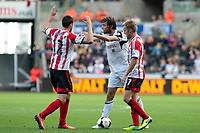 Saturday 19 October 2013 Pictured: ( L-R )  Ondrej CelUstka is pushed by michu while Sebastian Larsson also gets involved<br /> Re: Barclays Premier League Swansea City vSunderland at the Liberty Stadium, Swansea, Wales