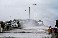 Hurricane ALBERT hits in Gaspesia on July 5,2014.<br /> <br /> Photo : Agence Quebec Presse  - Frederic Seguin