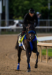LOUISVILLE, KY - MAY 02: Instilled Regard gallops in preparation for the Kentucky Derby at Churchill Downs on May 2, 2018 in Louisville, Kentucky. (Photo by Alex Evers/Eclipse Sportswire/Getty Images)