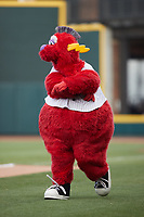 Winston-Salem Dash mascot Bolt entertains the crowd prior to the game against the Hickory Crawdads at Truist Stadium on July 7, 2021 in Winston-Salem, North Carolina. (Brian Westerholt/Four Seam Images)