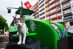 Curious cat on the publicity caravan before Stage 18 of the 2021 Tour de France, running 129.7km from Pau to Luz Ardiden, France. 15th July 2021.  <br /> Picture: A.S.O./Aurelien Vialatte   Cyclefile<br /> <br /> All photos usage must carry mandatory copyright credit (© Cyclefile   A.S.O./Aurelien Vialatte)