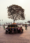 people at early morning under shede tree in park at Chongqing, China, Asia