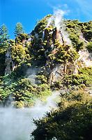 Waimangu Volcanic Valley near Rotorua, Central Plateau, New Zealand