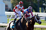 March 28, 2015: International Star with Miguel Mena up wins the Louisiana Derby Day at the New Orleans Fairgrounds. Steve Dalmado/ESW/CSM
