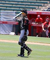 Adrian Sugastey - San Francisco Giants 2021 extended spring training (Bill Mitchell)