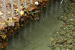 Schmutzrückhalte Rechen, Schaan, Liechtenstein, Wasser, Laub,