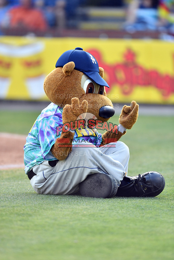 Asheville Hippies mascot Ted E Tourist (00) meditates between innings during a game against the Greenville Drive at McCormick Field on June 29, 2017 in Asheville, North Carolina. The Drive defeated the Tourists 9-6. (Tony Farlow/Four Seam Images)