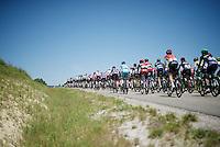peloton drive-by<br /> <br /> stage 16: Morain-en-Montagne to Bern (SUI) / 209km<br /> 103rd Tour de France 2016