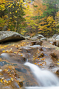 Autumn foliage along the Peabody River in Pinkham Notch of the White Mountains, New Hampshire USA during the autumn months.