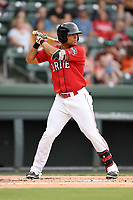 Designated htter Tyler Hill (7) of the Greenville Drive bats in a game against the Charleston RiverDogs on Friday, July 28, 2017, at Fluor Field at the West End in Greenville, South Carolina. Charleston won, 6-1. (Tom Priddy/Four Seam Images)