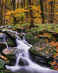 A small stream cascades over rocks alongside Highway 441 passing through the Great Smoky Mountains national park. Smoky Mountain photos by Gordon and Jan Brugman.