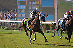 DEL MAR,CA-SEPTEMBER 03: Bowies Hero #12,ridden by Rafael Bejarano,wins the Del Mar Juvenile Turf at Del Mar Race Track on September 03,2016 in Del Mar,California (Photo by Kaz Ishida/Eclipse Sportswire/Getty Images)