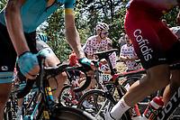 peloton including Polka Dot Jersey Tim Wellens (BEL/Lotto Soudal) up the 'Mur d'Aurac-sur-Loire'<br /> <br /> Stage 9: Saint-Étienne to Brioude (170km)<br /> 106th Tour de France 2019 (2.UWT)<br /> <br /> ©kramon