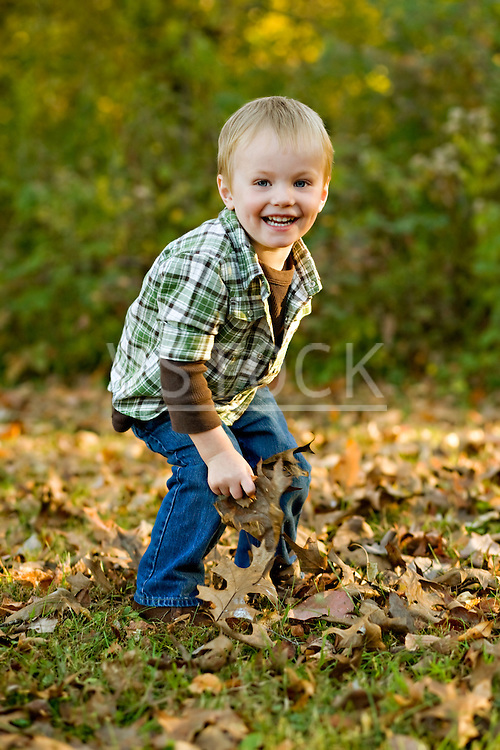USA, Illinois, Brimfield Boy (2-3) playing with Autumn leaves in park