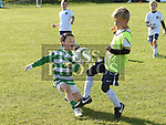 Drogheda Boys V Duleek & Termonfeckin U-8