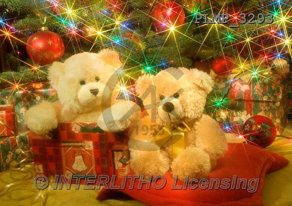 Marek, CHRISTMAS ANIMALS, WEIHNACHTEN TIERE, NAVIDAD ANIMALES, teddies, photos+++++,PLMP3293,#Xa# under Christmas tree,