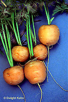 HS12-035d  Carrot - just harvested, Tumbelina variety
