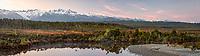 Dawn over Five Mile Lagoon with Aoraki Mount Cook, Mount Tasman and Franz Josef Glacier centre left, Westland Tai Poutini National Park, West Coast, UNESCO World Heritage Area, South Westland, New Zealand, NZ