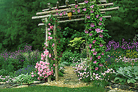 Garden arbor hand built with stickes and saplings has roseas and clematis growing in vines over it.