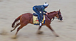 BALTIMORE, MD - MAY 17: Good Magic gallops in preparation for the Preakness at Pimlico Race Course on May 15, 2018 in Baltimore, Maryland (Photo by Scott Serio/Eclipse Sportswire/Getty Images)