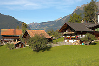 Typical Wooden Swiss House in alpine pastures - Grinderwald - Alps - Switzerland