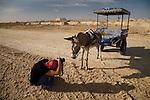 Deddeda photographs Adogo the donkey in the Siwa Oasis, Egypt.