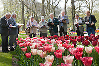 """Hollande, région des champs de fleurs, Lisse, Keukenhof, juges de la RHS (Royal Horticultural Society) de Kew Garden venu juger les tulipes et autre plantes bulbeuses pour les prix """"Award Garden Merit"""" (AGM), ici devant une tulipe 'National Velvet' (pourpre foncée) crée par l'INRA // Holland, """"Dune and Bulb Region"""" in April, Lisse, Keukenhof,  Judges of the RHS (Royal Horticultural Society) from Kew Garden come to judge tulips and others bulbous plants for the """"Award Garden Merit"""" (AGM), here in front of a french variety of tulip 'National Velvet' (dark purple) create by INRA."""