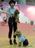 Toy Poodles Tako  and Tarutot the Osaka Pet Expo fashion show with their owner Iako Magawa, Osako, Japan.<br /> 25-Sept-11<br /> <br /> Photo by Richard Jones