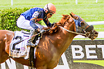 """ELMONT, NY - JULY 08: Mind Your Biscuits #2, ridden by Joel Rosario, wins the Belmont Sprint Stakes, a """"Win & You're In"""" race on Belmont Stakes Day at Belmont Park on July 8, 2017 in Elmont, New York (Photo by Sue Kawczynski/Eclipse Sportswire/Getty Images)"""