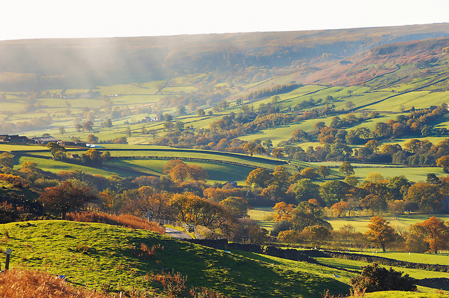 Farndale looking across dale,  North Yorkshire Moors National Park, England.