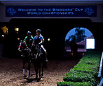 DEL MAR, CA - OCTOBER 29: Horses enter the track to workout in preparation for the Breeder's Cup races at Del Mar Thoroughbred Club on October 29, 2017 in Del Mar, California. (Photo by Scott Serio/Eclipse Sportswire/Breeders Cup)
