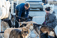 Volunteer veterinarians check Kristy Berington dogs at the 2016 Iditarod Pre-race vet check in Wasilla, Alaska. March 02, 2016 <br /> <br /> © Jeff Schultz/SchultzPhoto.com ALL RIGHTS RESERVED<br /> DO NOT REPRODUCE WITHOUT PERMISSION