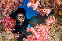 Finding a hole in soft coral (Dendronephthya sp.), a diver poses for a photo opportunity in the Similan Islands, Andaman Sea, Thailand.
