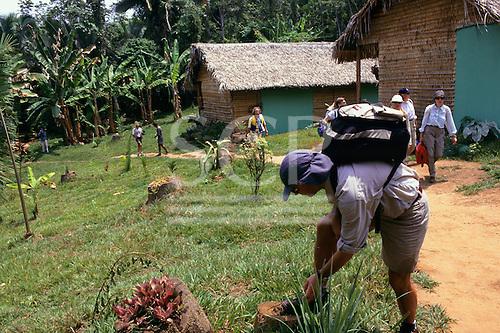 Tataquara, Amazon, Brazil. Ecotourism - tourists on the path leading up to the living quarter.