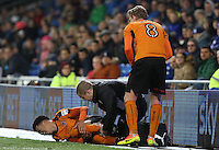 Helder Costa of Wolverhampton Wanderers screams in pain after colliding with the LED advertising board during the Sky Bet Championship match between Cardiff City and Wolverhampton Wanderers at The Cardiff City Stadium, Wales, UK. 13 December 2016