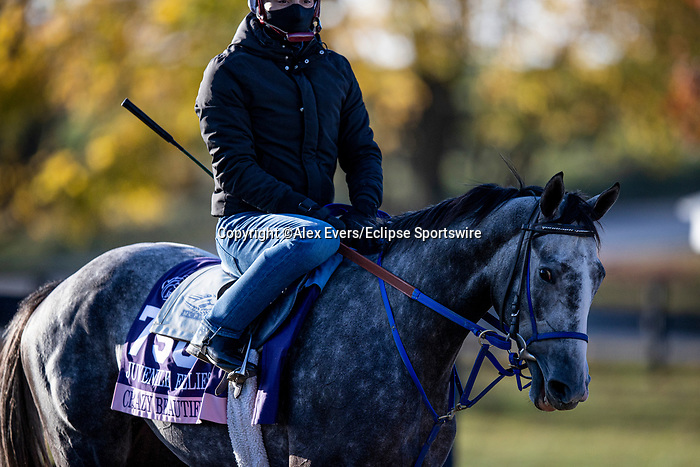 November 3, 2020: Crazy Beautiful, trained by trainer Kenneth G. McPeek, exercises in preparation for the Breeders' Cup Juvenile Fillies at Keeneland Racetrack in Lexington, Kentucky on November 3, 2020. Alex Evers/Eclipse Sportswire/Breeders Cup