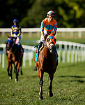 SEPTEMBER 06 2021: Somelikeithotbrown with Jose Ortiz at the Winstar Mint Million at Kentucky Downs in Franklin, Kentucky on September 06, 2021. Evers/Eclipse Sportswire/CSM