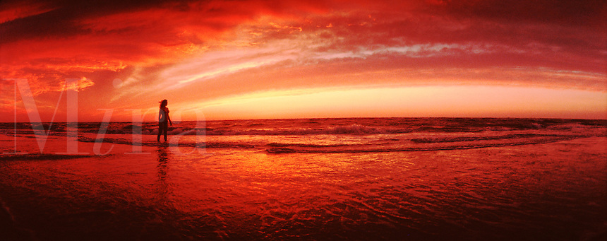 Panoramic of a woman walking on the beach at sunset