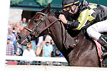 LEXINGTON, KY - OCTOBER 08: #8 Champagne Problems and jockey Calvin Borel win the 4th race, Maiden 2 year old fillies $60,000 at Keeneland Race Course.  October 8, 2016, Lexington, Kentucky. (Photo by Candice Chavez/Eclipse Sportswire/Getty Images)
