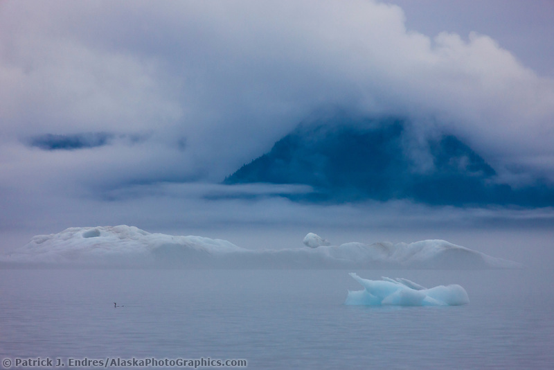Fog and mist, icebergs from the Columbia Glacier, Chugach National Forest, northern Prince William Sound, Alaska.