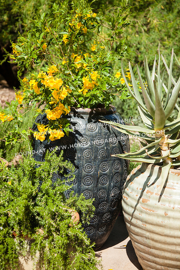 A cluster of containers at the Desert Botanical Garden in Phoenix