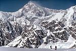 Denali National Park, Alaska, Climbers on skis, Southeast Buttress, Denali, (Mount McKinley) view to the sumit from the Ruth Glacier, Don Sheldon Ampitheatre, Alaska Range, Alaska, U.S.A., North America, .