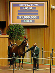 September 14, 2015: Hip 99 War Front - Azzedine filly sold for $1,000,000 consigned by Lane's End.  Candice Chavez/ESW/CSM