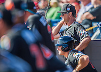 7 March 2016: Miami Marlins Manager Don Mattingly watches play from the dugout during a Spring Training pre-season game against the Washington Nationals at Space Coast Stadium in Viera, Florida. The Nationals defeated the Marlins 7-4 in Grapefruit League play. Mandatory Credit: Ed Wolfstein Photo *** RAW (NEF) Image File Available ***