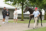 Hip #28 Street Cry - Storm Beauty filly being inspected    at the  Keeneland September Yearling Sale.  September 9, 2012.