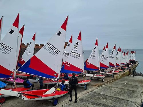 Royal Cork's Rian Collins Wins Topper Northerns at Donaghadee Sailing Club