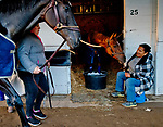LOUISVILLE, KY - MAY 01: Backside workers tend to horses on shed row during morning workouts at Churchill Downs on May 1, 2018 in Louisville, Kentucky. (Photo by Scott Serio/Eclipse Sportswire/Getty Images)