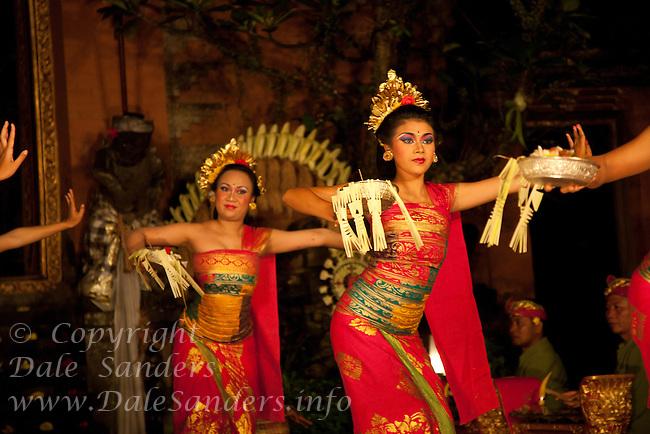 Balinese Dancers in elaborate costumes perform Legong Dance at Puri Saren Ubud ( Ubud Palace ) in Bali, Indonesia.  No Releases