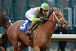 January 23, 2021: Getridofwhatailesu (3) with jockey Joseph Rocco, Jr. aboard winning the Pippin Stakes at Oaklawn Racing Casino Resort in Hot Springs, Arkansas. ©Justin Manning/Eclipse Sportswire/CSM
