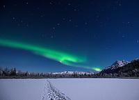 Aurora borealis near Knik, Alaska.